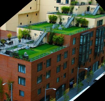 Growing A Rooftop Garden Is An Option For Those People Who Donu0027t Have A  Yard Or Enough Gardening Space. Creating A Rooftop Garden May Prove  Somewhat Tricky ...